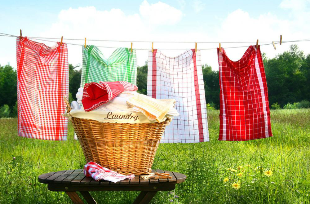 Technology has Changed Laundry and Cleaning Business: Here's how!